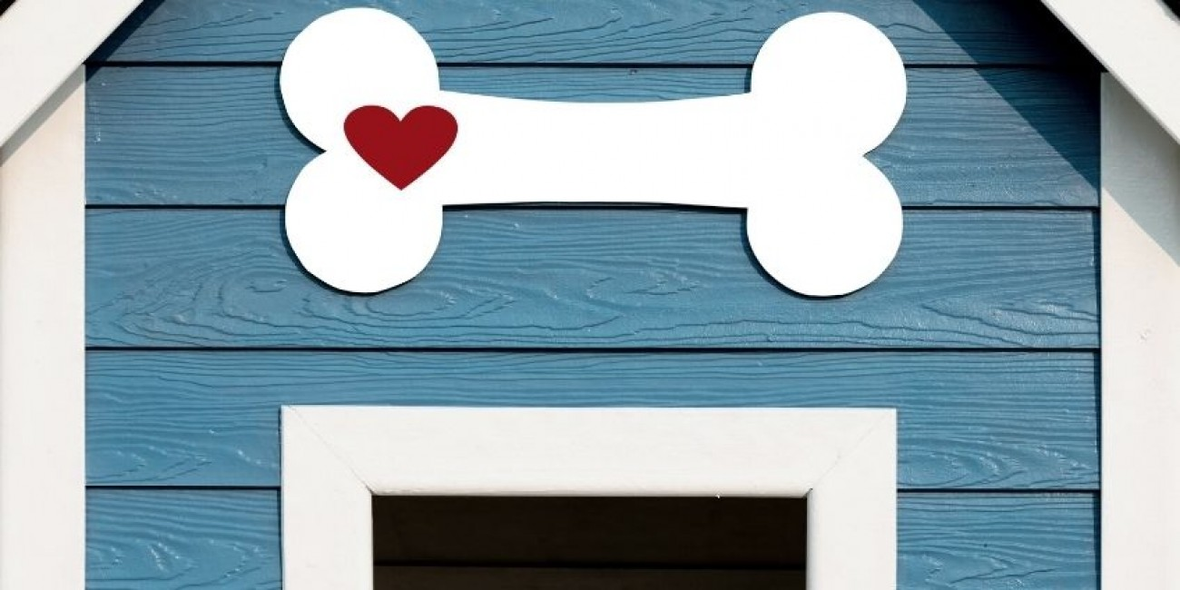 Tips for Decorating Your Doghouse