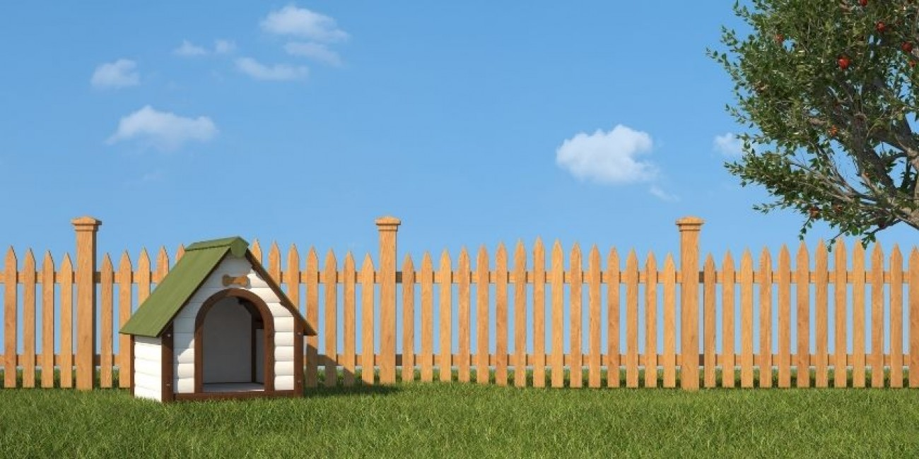Everything You Need To Build a Doghouse