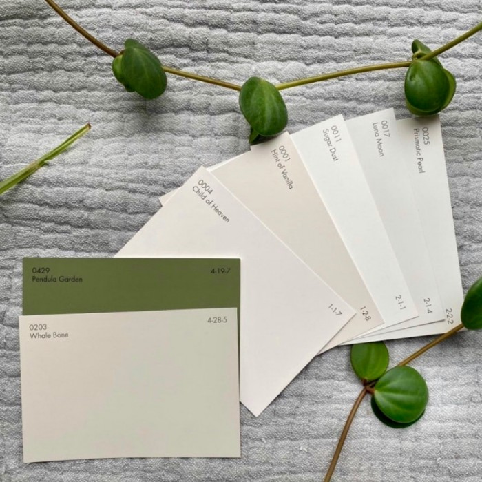 Free Color Cards