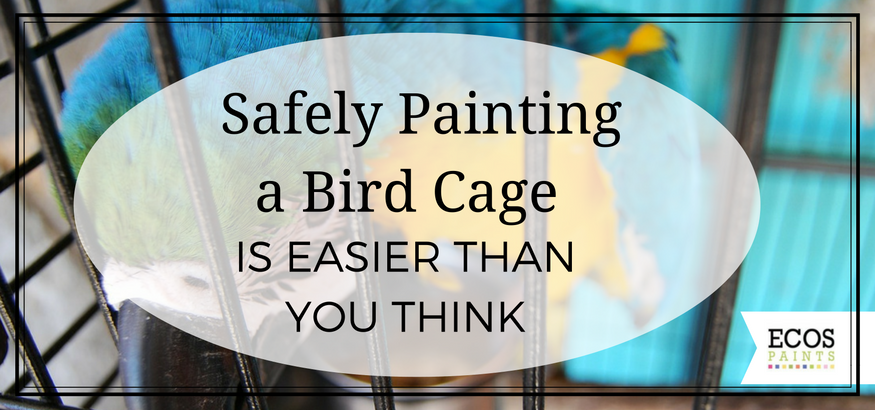 safely painting a bird cage - ecos paints