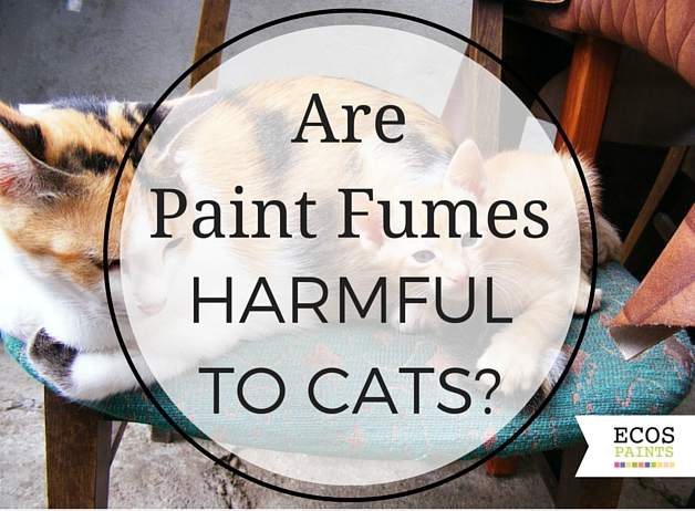 are paint fumes harmful to cats?